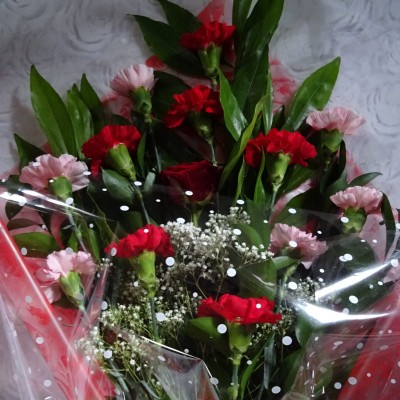 Red and Pink Carnation Bouquet with Single Red Rose