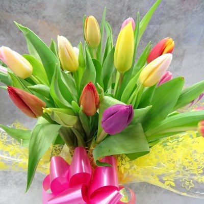 Simply Tulips in a Vase
